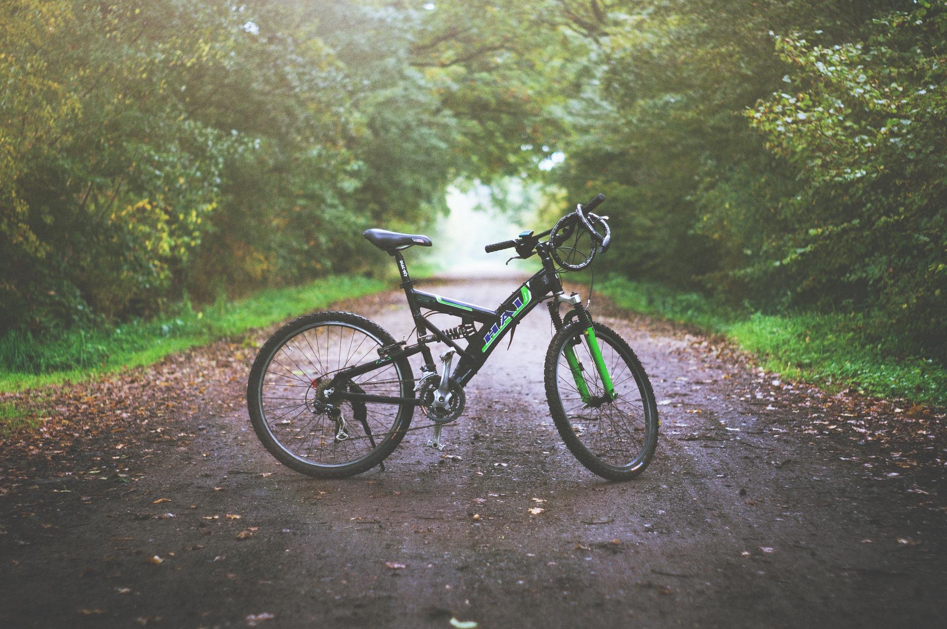 ¿Eres un amante del ciclismo? ¿Estás haciendo el camino en bicicleta?